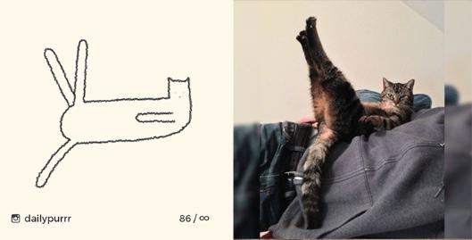 Cat - dailypurrr 86/co