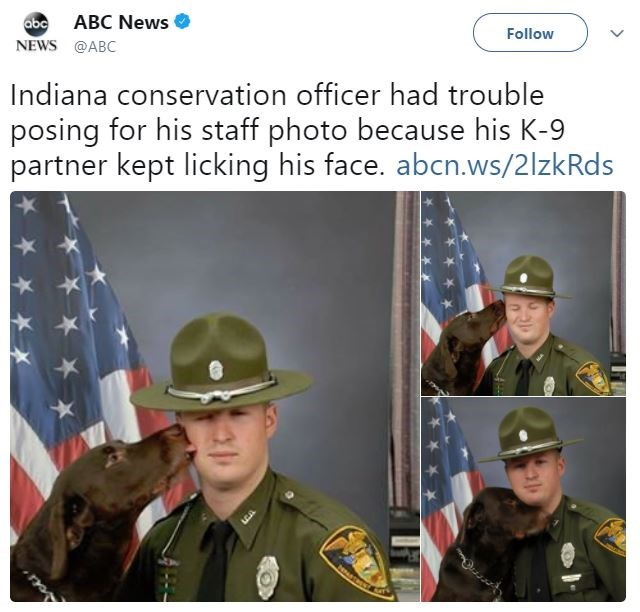 Uniform - abcABC News NEWS @ABC Follow Indiana conservation officer had trouble posing for his staff photo because his K-9 partner kept licking his face. abcn.ws/2lzkRds