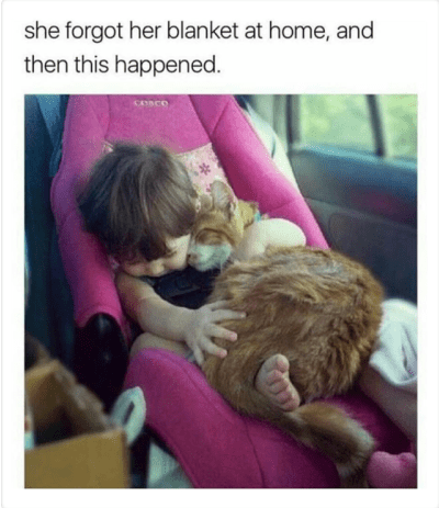 little toddler in car seat hugging cat she forgot her blanket at home, and then this happened. cesce