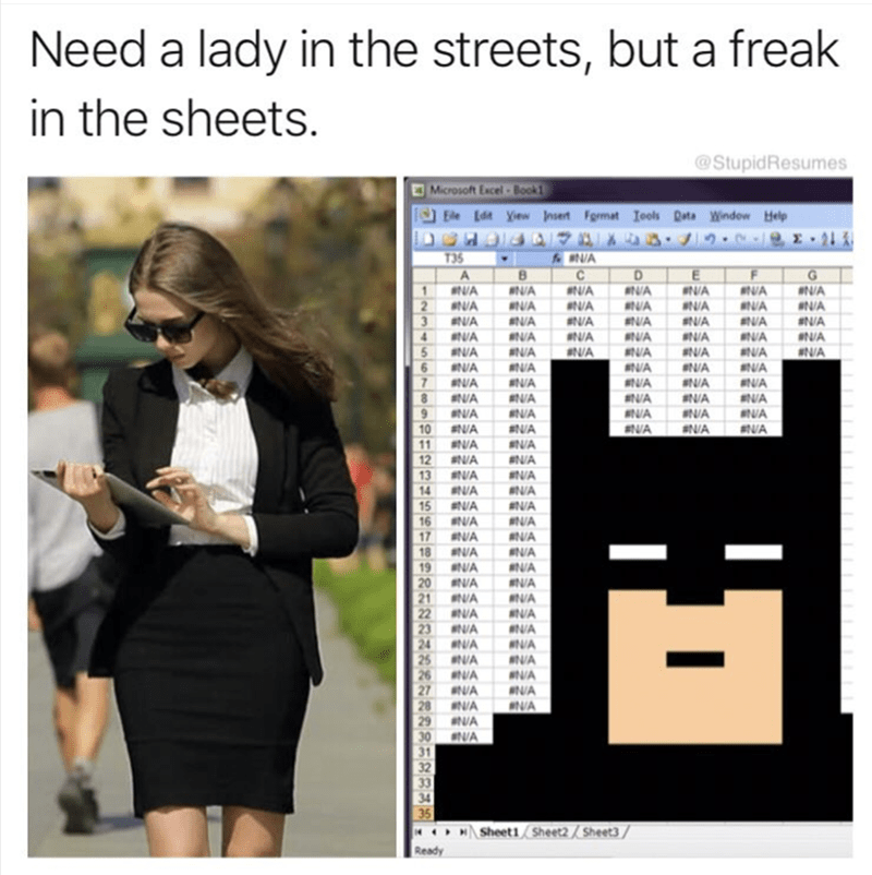 Text - Need a lady in the streets, but a freak in the sheets. @StupidResumes O Microsoft Excel Book1 Ele Edt yew nsert Fgrmat Iools Data Windew Help DCHDIIA NG .J1. BINA C T35 G A 1 NA NVA NVA NA NA NA 2 VA NA A NA NVA NVA NA NA NA SNA NA AN/A NA NA 4 NA NA NA NA BNA NA NA 5 6 7 8 9 10 11 12 ANA NVA ANA NA NA BNA NA ANA NA ANA NA NA NA NA NA NA BNA AN/A NA aNA BNA ENA BNVA ANA NVA NIA NA #NA SNA #NA ANA NA SNA NA aN/A 13 14 15 16 17 18 19 20 21 22 23 24 25 NA 26 NA 27 N/A 28 N/A 29 30 #N/A ANA B