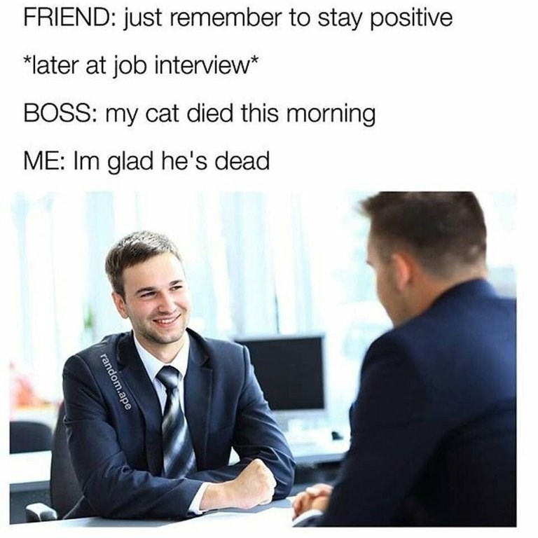 Job - FRIEND: just remember to stay positive later at job interview* BOSS: my cat died this morning ME: Im glad he's dead random.ape
