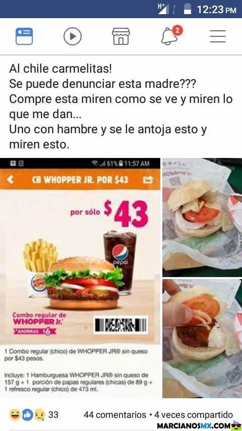 Cheezburger Image 9217269760