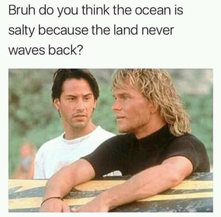 meme about the ocean being salty because the land never waves back with picture from Point Break