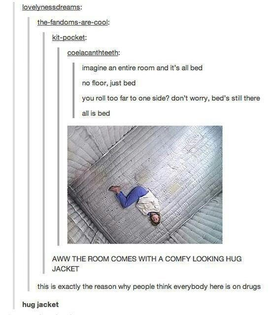 Tumblr thread about padded cell being room that is all bed and straitjacket being hug jacket
