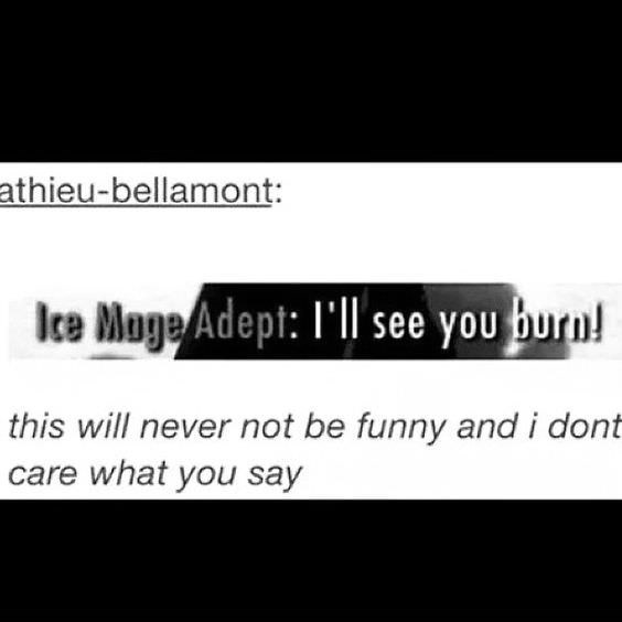 Skyrim Tumblr post about ice mage wanting to see you burn