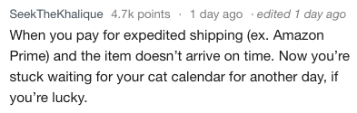Text - SeekTheKhalique 4.7k points 1 day ago edited 1 day ago When you pay for expedited shipping (ex. Amazon Prime) and the item doesn't arrive on time. Now you're stuck waiting for your cat calendar for another day, if you're lucky.