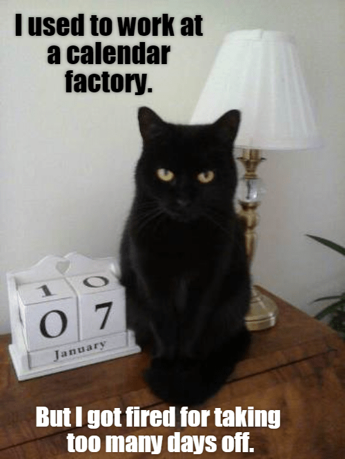 lolcats - Cat - Tused to work at a calendar factory. 0 7 January But I got fired for taking too many days of.