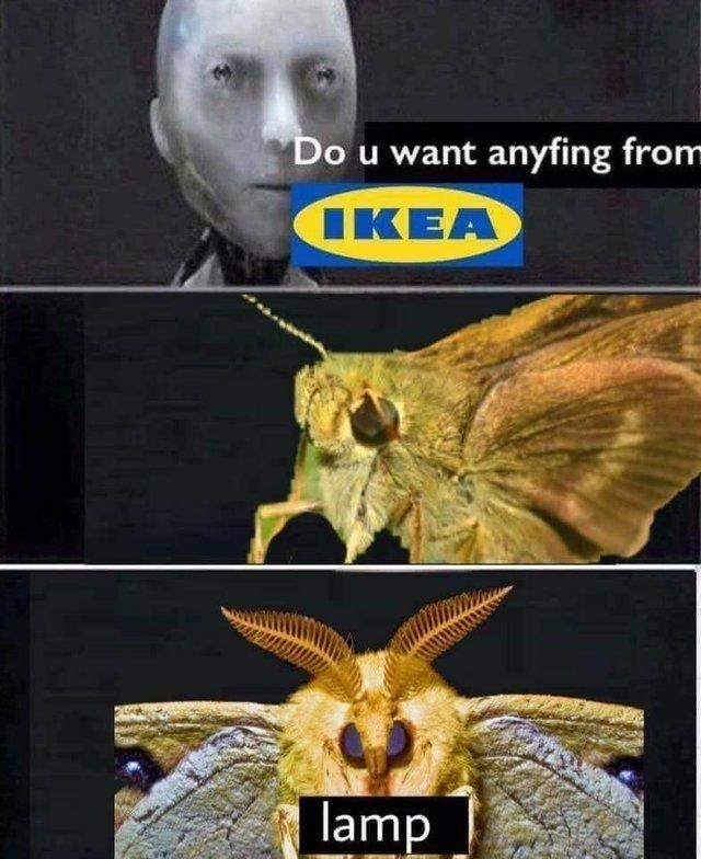 "robot asking moth if they want anything from Ikea and moth answering ""lamp"""