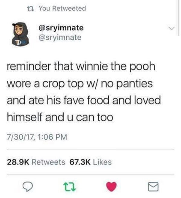 meme - Text - t You Retweeted @sryimnate @sryimnate reminder that winnie the pooh wore a crop top w/ no panties and ate his fave food and loved himself and u can too 7/30/17, 1:06 PM 28.9K Retweets 67.3K Likes Σ