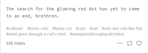 screenshot of text from tumblr cats thoughts The search for the glowing red dot has yet to come to an end, brethren. #catlover #funny cats #funny cat #cats #cat #why are cats like this #what goes through a cat's mind #whatgoesthroughacat'smind 225 notes