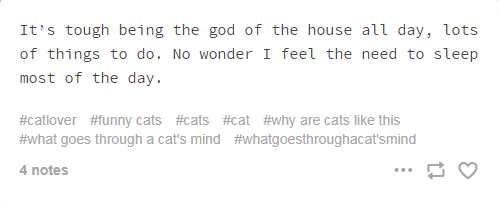 screenshot of text from tumblr cats thoughts It's tough being the god of the house all day, lots of things to do. No wonder I feel the need to sleep most of the day. #catlover #funny cats #cats #cat #why are cats like this #what goes through a cat's mind #whatgoesthroughacat'smind 4 notes