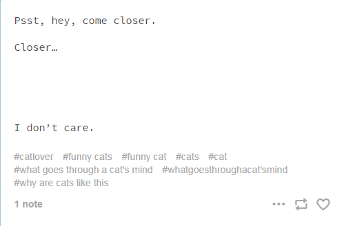 screenshot of text from tumblr cats thoughts Psst, hey, come closer. Close... I don't care. #catlover #funny cats #funny cat #cats #cat #what goes through a cat's mind #whatgoesthroughacat'smind #why are cats like this 1 note