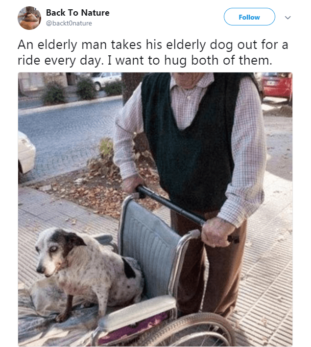 Product - Back To Nature Follow @backt0nature An elderly man takes his elderly dog out for a ride every day. I want to hug both of them.