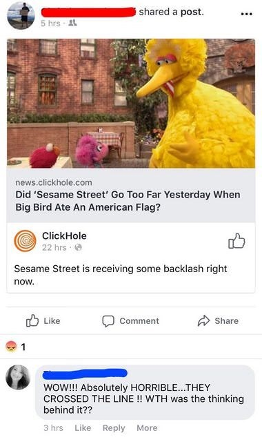 Text - shared a post. 5 hrs A news.clickhole.com Did 'Sesame Street' Go Too Far Yesterday When Big Bird Ate An American Flag? ClickHole 22 hrs Sesame Street is receiving some backlash right now Like Comment Share 1 woW!!! Absolutely HORRIBLE...THEY CROSSED THE LINE !! WTH was the thinking behind it?? 3 hrs Like Reply More