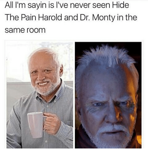 Face - All I'm sayin is I've never seen Hide The Pain Harold and Dr. Monty in the same room