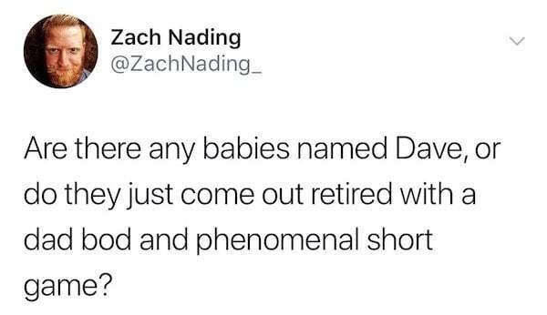 "meme about the name ""Dave"" not suiting young people"