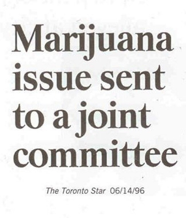 Text - Marijuana issue sent а to a joint committee CO The Toronto Star 06/14/96