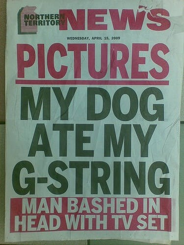 Text - RaNEWS PICTURES MY DOG ATE MY G-STRING NORTHER TERRITOR WEDNESDAY, APRIL 15, 2009 MAN BASHED IN HEAD WITH TV SET