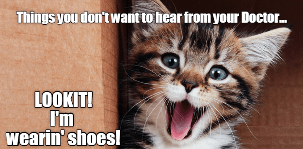 shoes surprise cat memes - 9218597376