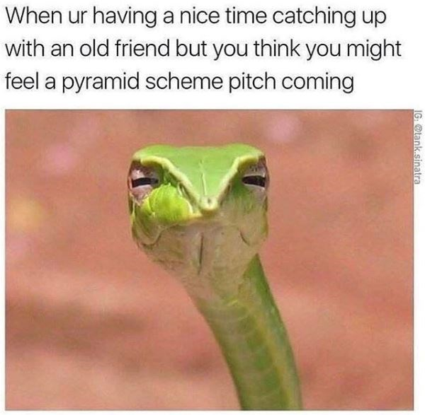 meme about getting thrown a pyramid scheme when you meet an old friend