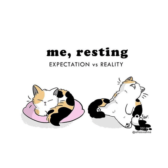 Cartoon - me, resting EXPECTATION vs REALITY 2018 aliasxahna