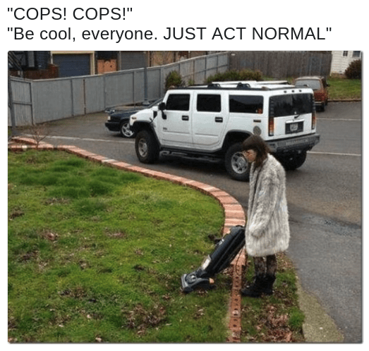 be cool, cops are looking for this meme