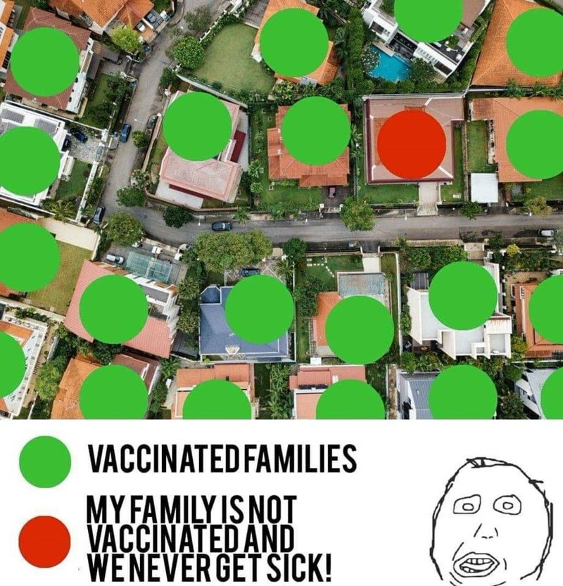 anti vaxxers meme about herd immunity in vaccinated neighborhood