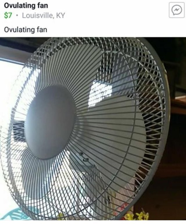 Product - Ovulating fan $7 Louisville, KY Ovulating fan