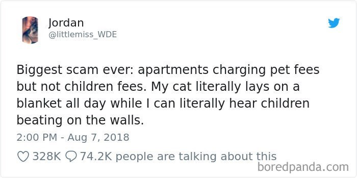 Text - Jordan @littlemiss_WDE Biggest scam ever: apartments charging pet fees but not children fees. My cat literally lays on a blanket all day while I can literally hear children beating on the walls. 2:00 PM Aug 7, 2018 328K 74.2K people are talking about this boredpanda.com