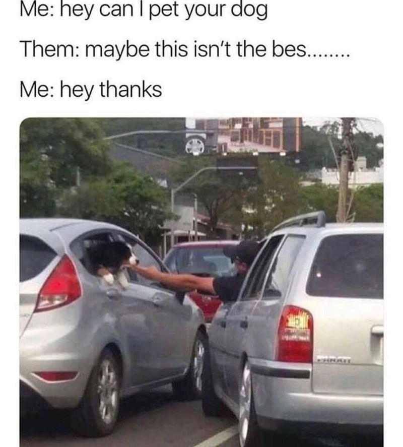 "Caption that reads, ""Me: Hey can I pet your dog? Them: maybe this isn't the bes- Me: Hey thanks"" above a pic of a guy petting a cute puppy through a car window in traffic"