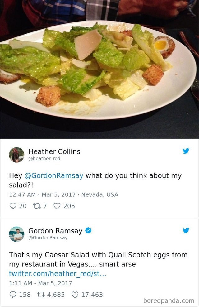 picture plate of salad twitter what do you think about my salad?! 12:47 AM Mar 5, 2017 Nevada, USA 20 t 7 205 Gordon Ramsay @GordonRamsay That's my Caesar Salad with Quail Scotch eggs from my restaurant in Vegas... smart arse twitter.com/heather red/st... 1:11 AM Mar 5, 2017 158 4,685 17,463 boredpanda.com