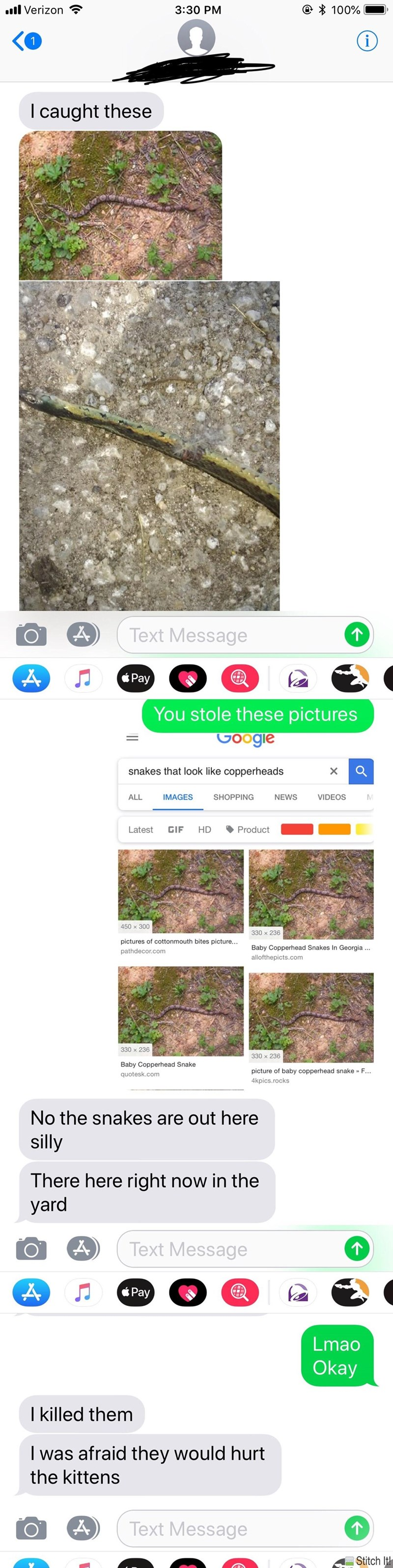 picture of snakes I caught these Text Message Pay You stole these pictures Google snakes that look like copperheads X ALL IMAGES SHOPPING NEWS VIDEOS Latest GIF HD Product 450 x 300 330 x 236 pictures of cottonmouth bites picture... Baby Copperhead Snakes In Georgia allofthepicts.com pathdecor.com 330 x 236 330 x 236 Baby Copperhead Snake picture of baby copperhead snake» F... quotesk.com 4kpics.rocks No the snakes are out here silly There here right now in the yard Text Message Pa