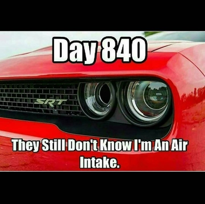 Vehicle - Day840 SR They Still Dont KnowI'm An Air Intake.