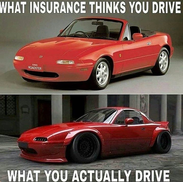 Land vehicle - WHAT INSURANCE THINKS YOU DRIVE ROADSTER WHAT YOU ACTUALLY DRIVE