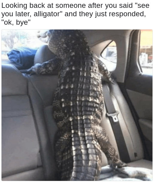see you later alligator in a while crocodile meme