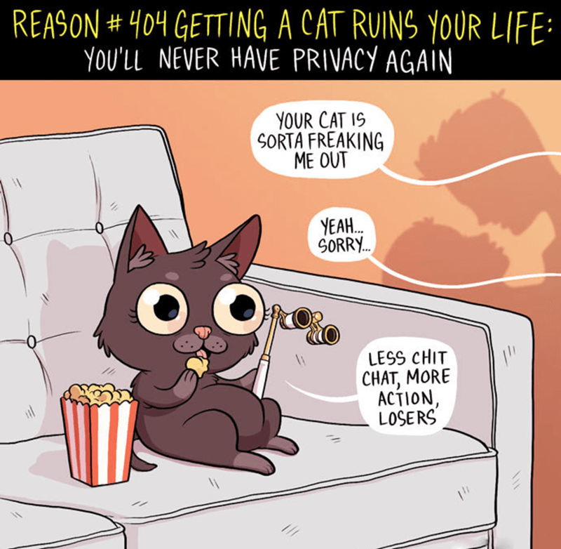 Cartoon - REASON#404 GETTING A CAT RUINS YOUR LIFE: YOU'LL NEVER HAVE PRIVACY AGAIN YOUR CAT IS SORTA FREAKING ME OUT YEAH SORRY. LESS CHIT CHAT, MORE ACTION, LOSERS