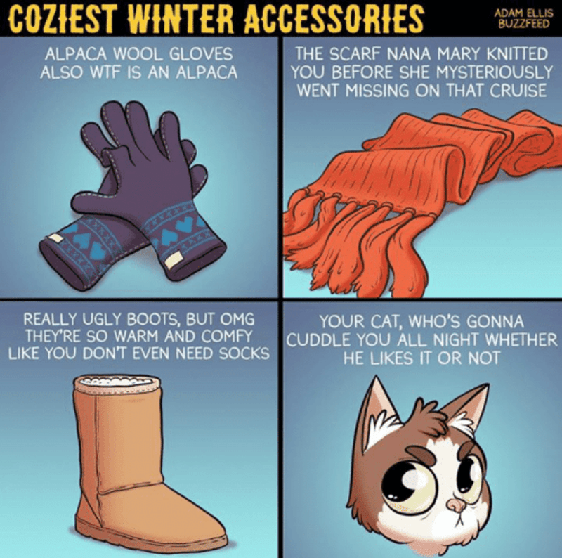 Cartoon - COZIEST WINTER ACCESSORIES ADAM ELLIS BUZZFEED THE SCARF NANA MARY KNITTED YOU BEFORE SHE MYSTERIOUSLY WENT MISSING ON THAT CRUISE ALPACA WOOL GLOVES ALSO WTF IS AN ALPACA REALLY UGLY BOOTS, BUT OMG THEY'RE SO WARM AND COMFY LIKE YOU DON'T EVEN NEED SOCKS YOUR CAT, WHO'S GONNA CUDDLE YOU ALL NIGHT WHETHER HE LIKES IT OR NOT