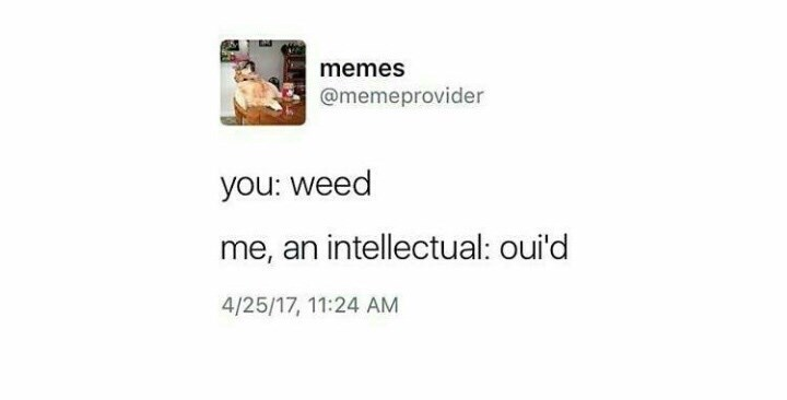 Text - memes @memeprovider you: weed me, an intellectual: oui'd 4/25/17, 11:24 AM