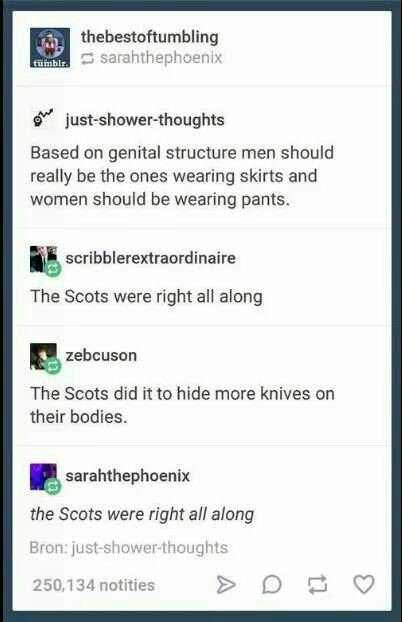 Text - thebestoftumbling sarahthephoenix fumblr just-shower-thoughts Based on genital structure men should really be the ones wearing skirts and women should be wearing pants. scribblerextraordinaire The Scots were right all along zebcuson The Scots did it to hide more knives on their bodies. sarahthephoenix the Scots were right all along Bron: just-shower-thoughts 250,134 notities