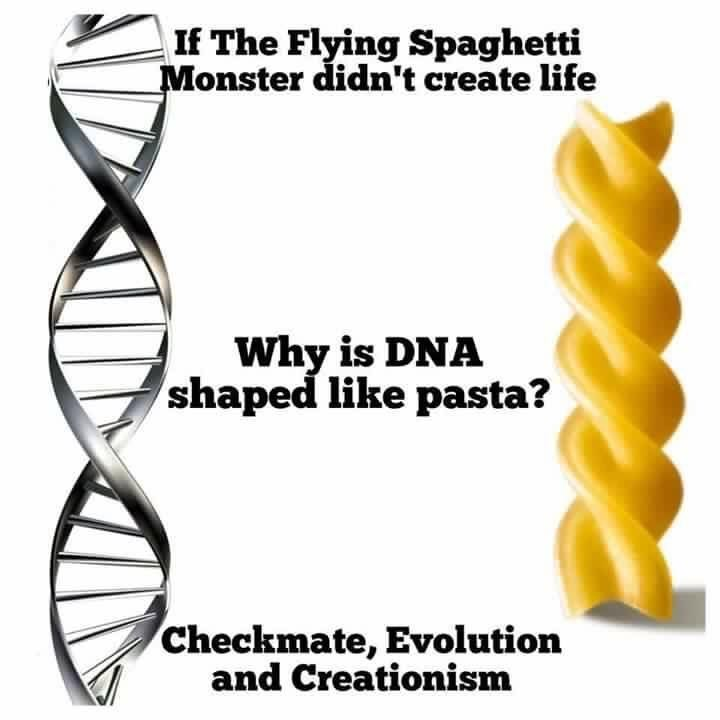 Text - If The Flying Spaghetti Monster didn't create life Why is DNA shaped like pasta? Checkmate, Evolution and Creationism