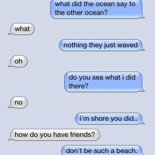 Text - what did the ocean say to the other ocean? what nothing they just waved oh do you sea what i did there? no i'm shore you did.. how do you have friends? don't be such a beach.