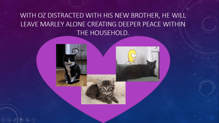 Text - WITH OZ DISTRACTED WITH HIS NEW BROTHER, HE WILL LEAVE MARLEY ALONE CREATING DEEPER PEACE WITHIN THE HOUSEHOLD