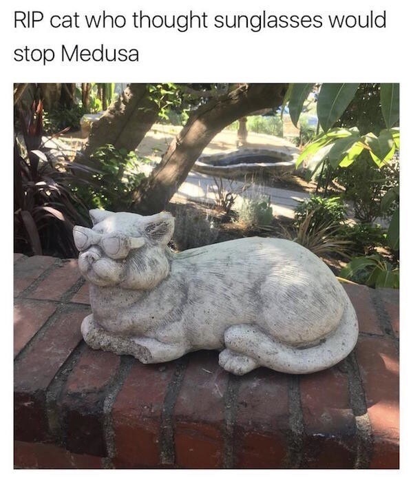 Statue - RIP cat who thought sunglasses would stop Medusa