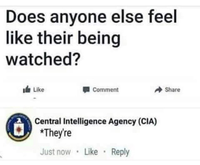 Text - Does anyone else feel like their being watched? Like Share Comment Central Intelligence Agency (CIA) *They're Like Reply Just now