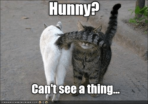 Can\'t see a thing...
