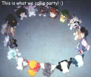 cursed_image - Bracelet - This is what we call a party! :)