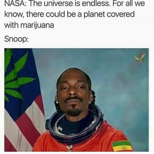 snoop dogg meme - Forehead - NASA: The universe is endless. For all we know, there could be a planet covered with marijuana Snoop: