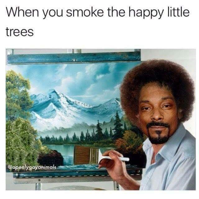snoop dogg meme - Text - When you smoke the happy little trees openlygayanimals