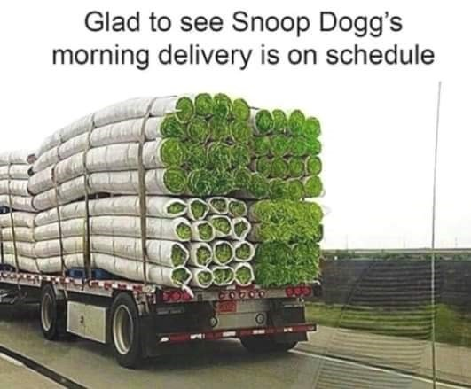 snoop dogg meme - Transport - Glad to see Snoop Dogg's morning delivery is on schedule