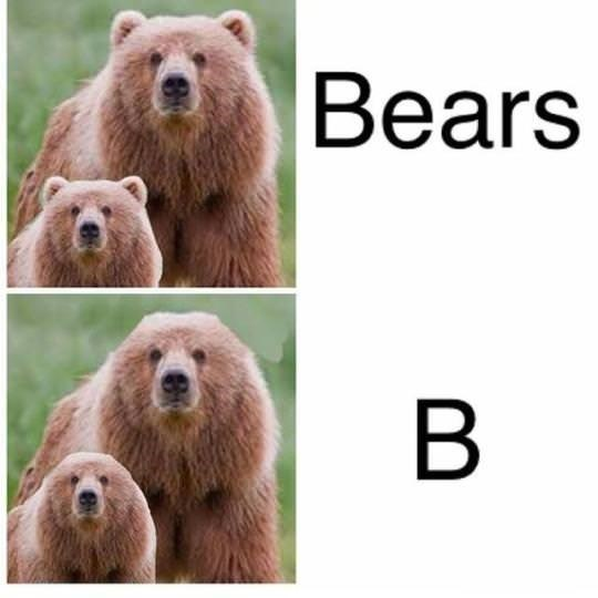 Pic of bears and pic of 'B' underneath represented with bears without 'ears'
